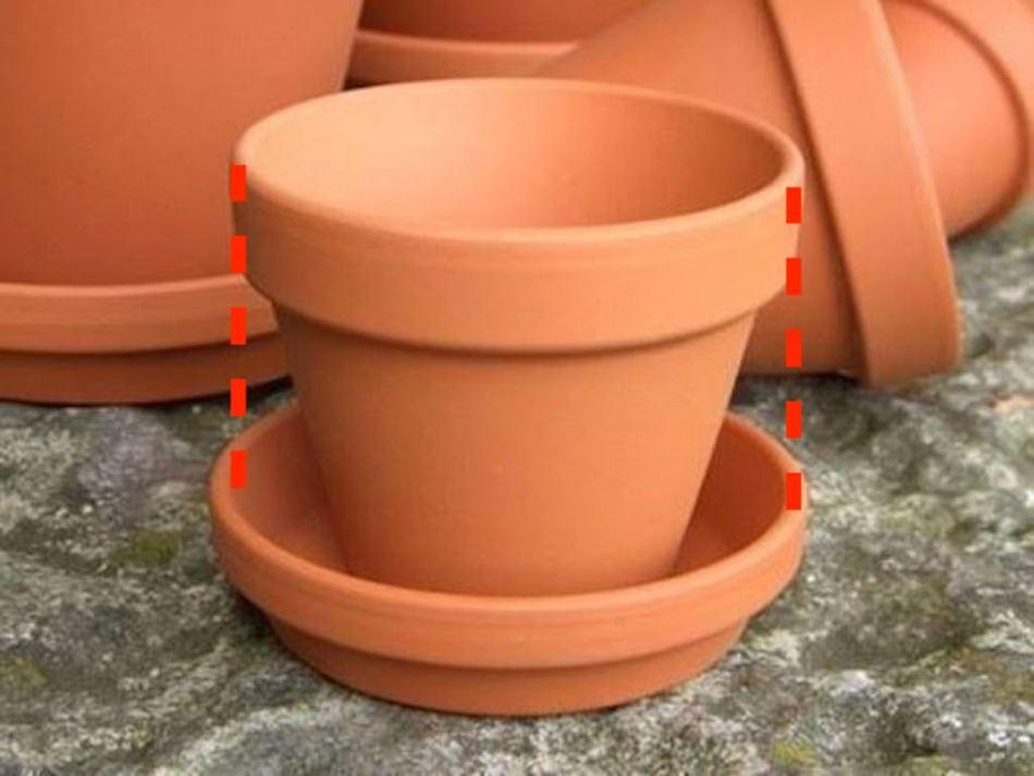 Pot de terre cuite avec soucoupe aux dimensions adéquates.