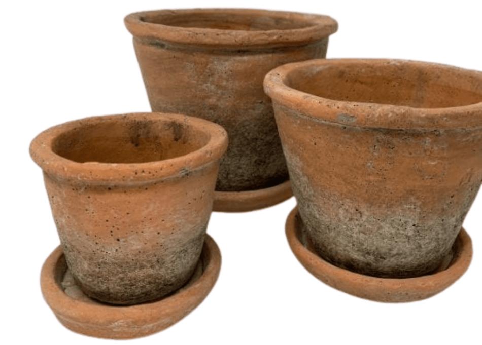 Pots de terre cuite avec soucoupes assorties.