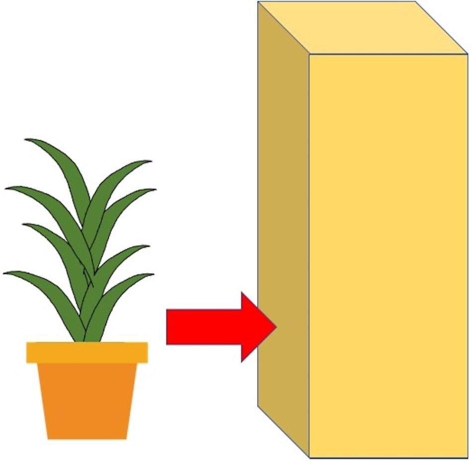 Dessin de lucky bambou à côté d'une boîte. Une flèche indique qu'il le faut y placer.
