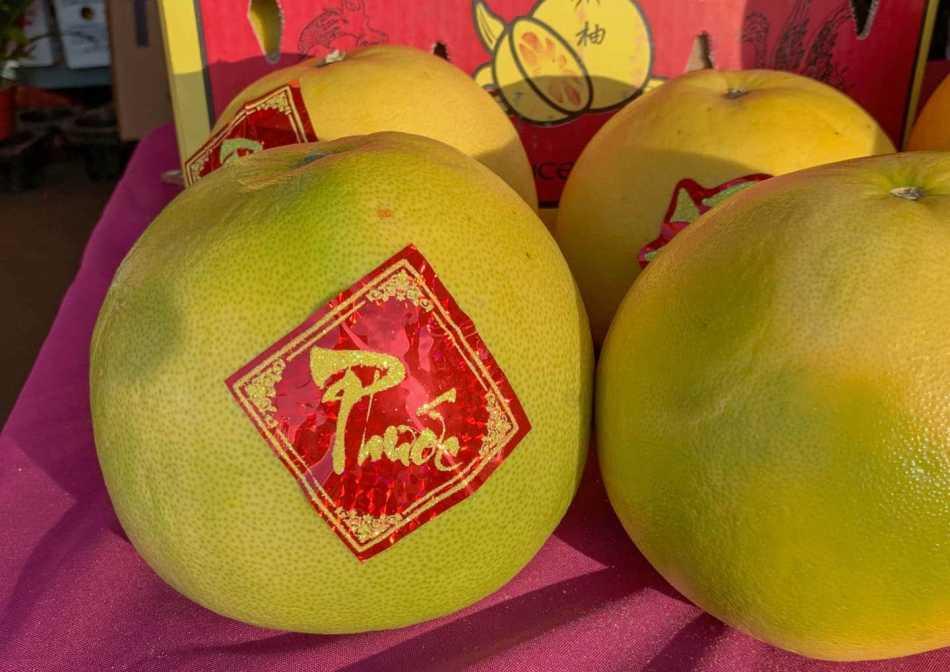 Fruits de pomelo portant une étiquette rouge vif.