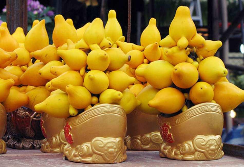 Arrangements de fruits de morelle mammiforme dans des paniers dorés.