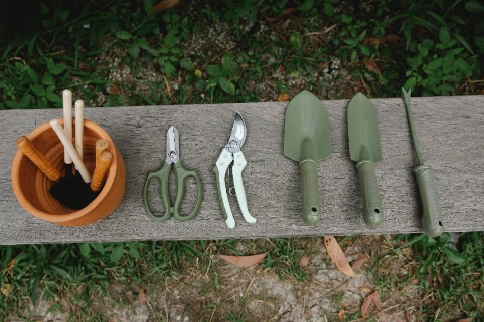 Outils de jardinage placés sur un banc en bois.