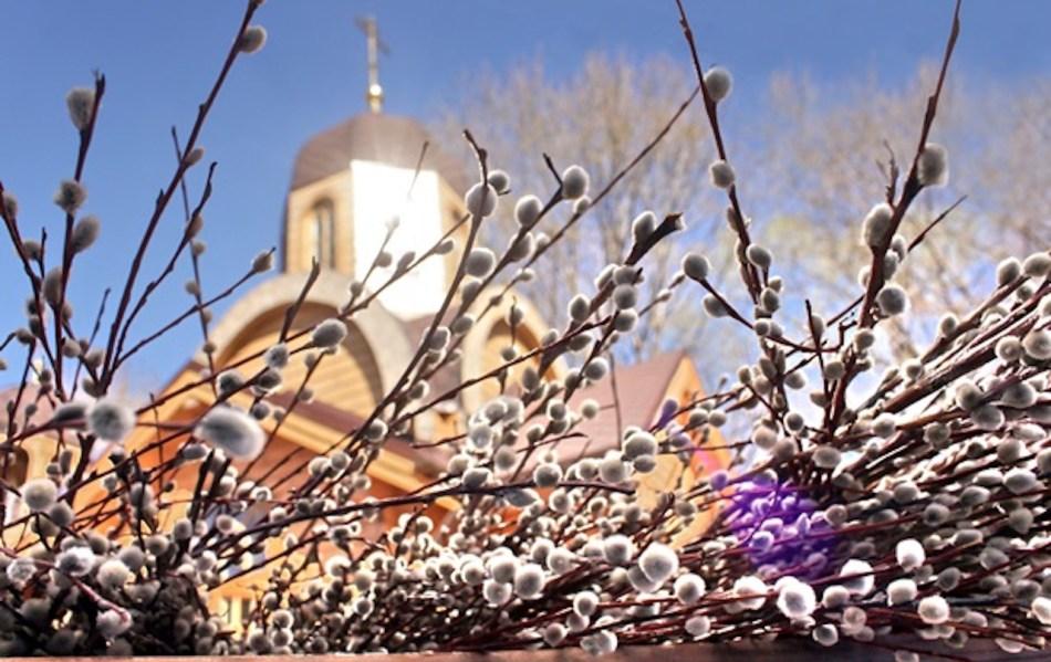 Chatons de saule devant église orthodoxe.