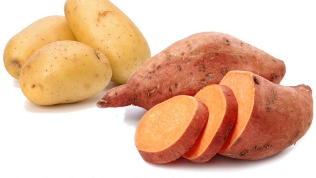 Tubercule de pomme de terre comparé à un tubercule de patate douce.