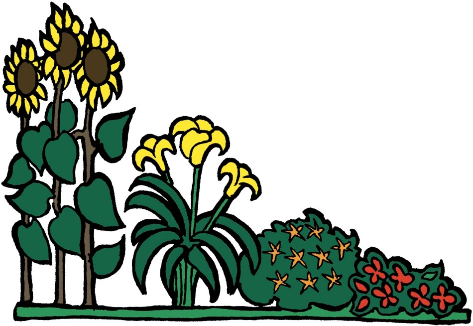 Ill. montrant des plantes placées par ordre de hauteur.