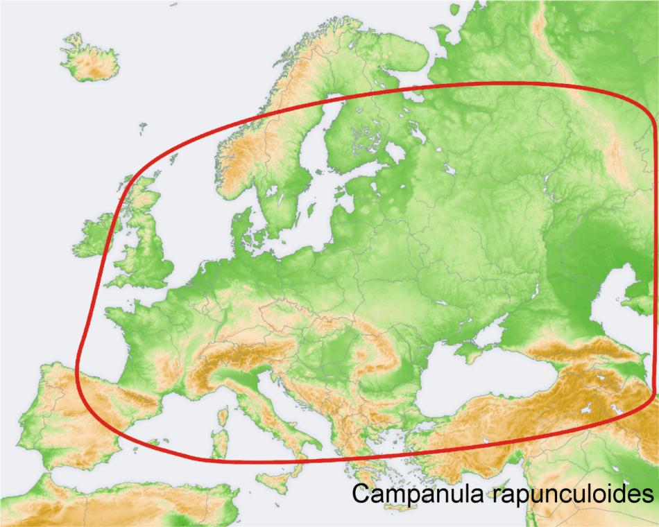 Carte montrant l'étendue approximative de l'aire de répartition naturelle de la campanule fausse raiponce en Eurasie.