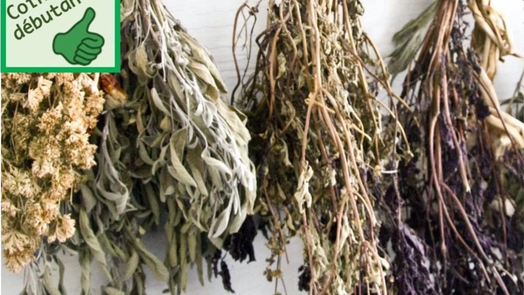 Fines herbes qui sèchent fixées sur le plafond.