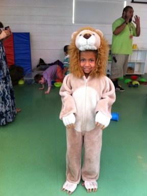 Malina - the lion