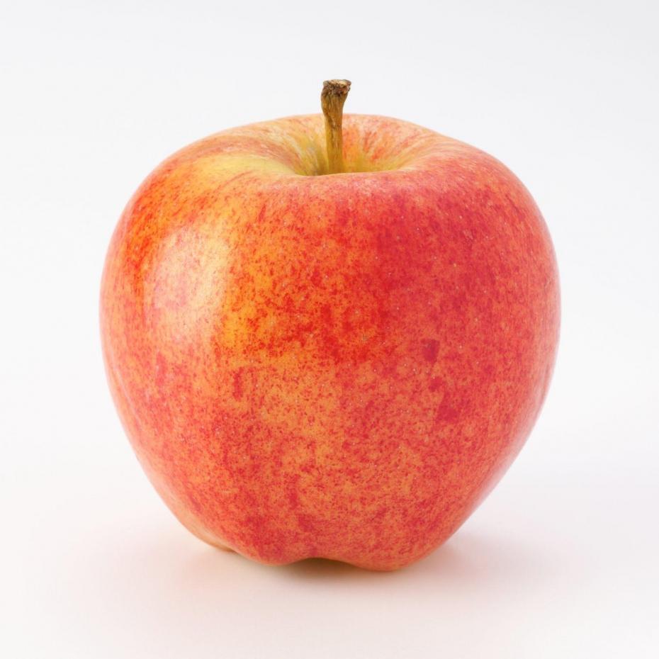 Pomme de reinette les jardins de l 39 enfance - Pomme de reinette et pomme d api tapis tapis rouge ...