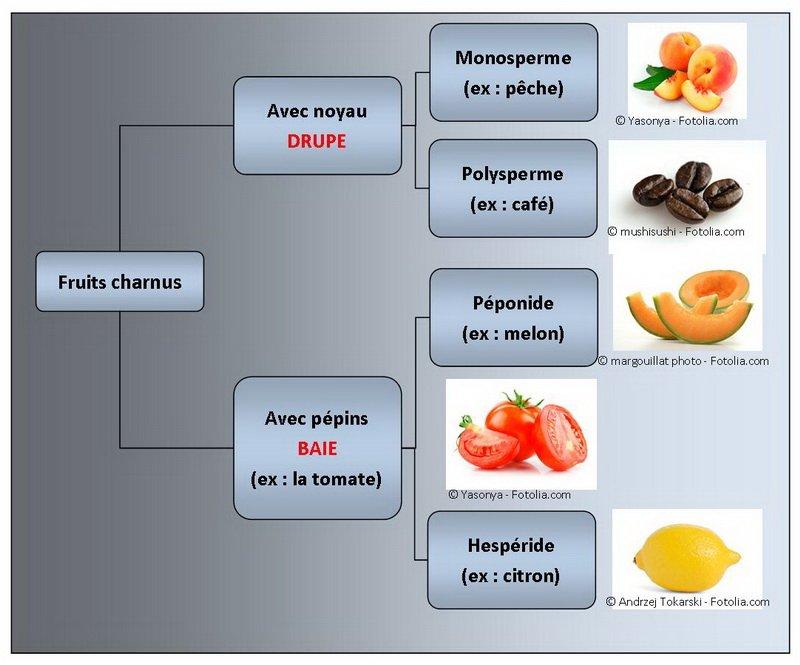 Fruits charnus