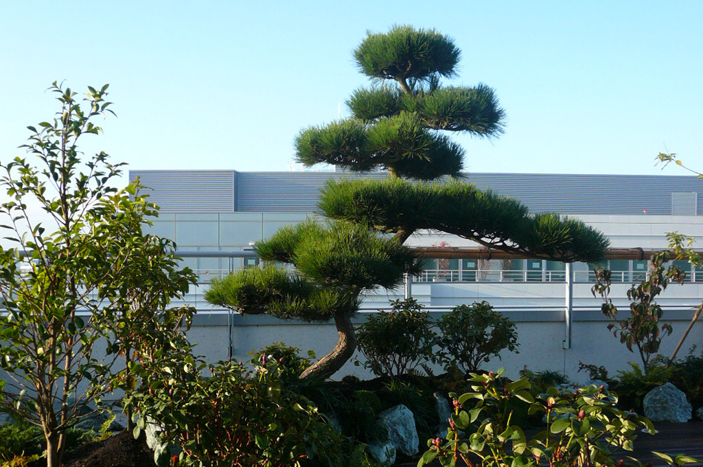 Jardins du japon et d 39 ailleurs architecte paysagiste for Architecte region parisienne