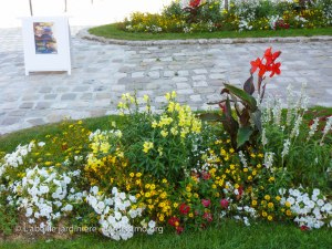 20120810 - Cher - Aubigny - massif