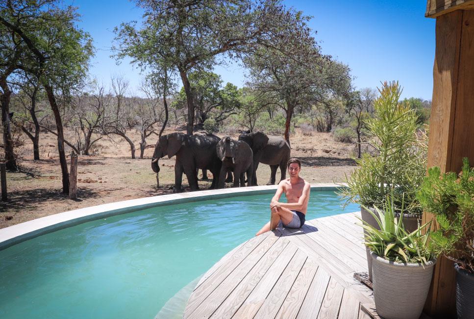 The River Lodge: Where Elephants Wander