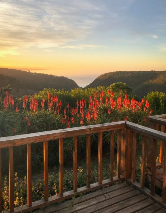 Unique Stays on South Africa's Garden Route