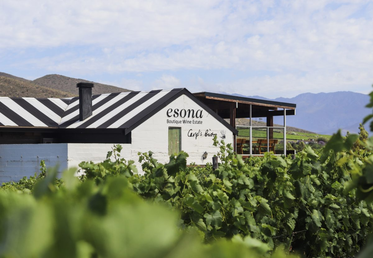 Bespoke Wine Experiences in South Africa's Robertson Valley