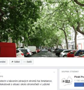 Vyjádření: Situaci okolo stromořadí v Lužické ulici – výzva k diskuzi