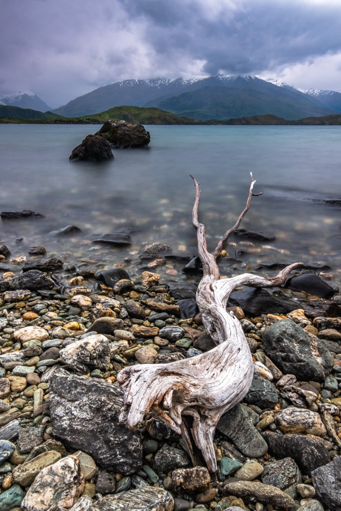 Fine Art Photography - Driftwood and the Remarkables