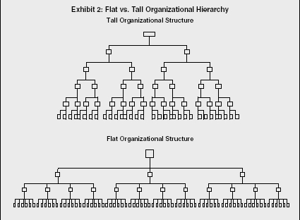IY1 Business & Management: Organisational Design & Structure