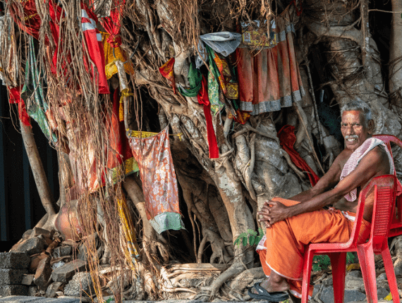 A priest sitting next to a Banyan tree