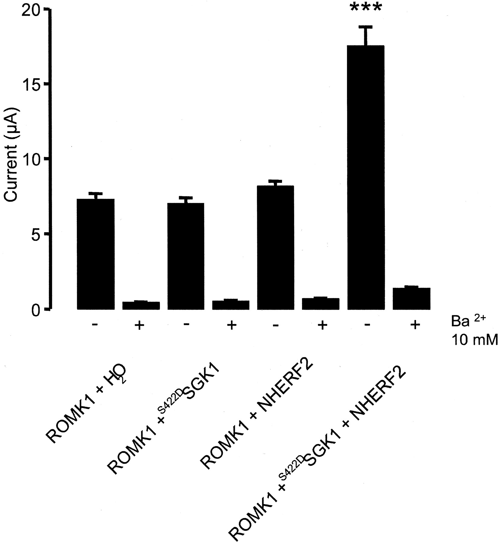 The Serum And Glucocorticoid Inducible Kinase Sgk1 And The Na H Exchange Regulating Factor