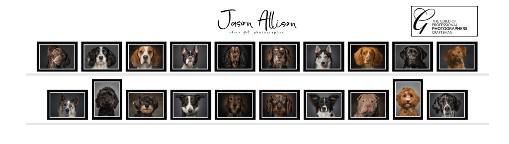 Jason Allison Guild Craftsman Panel - Dog Portraits