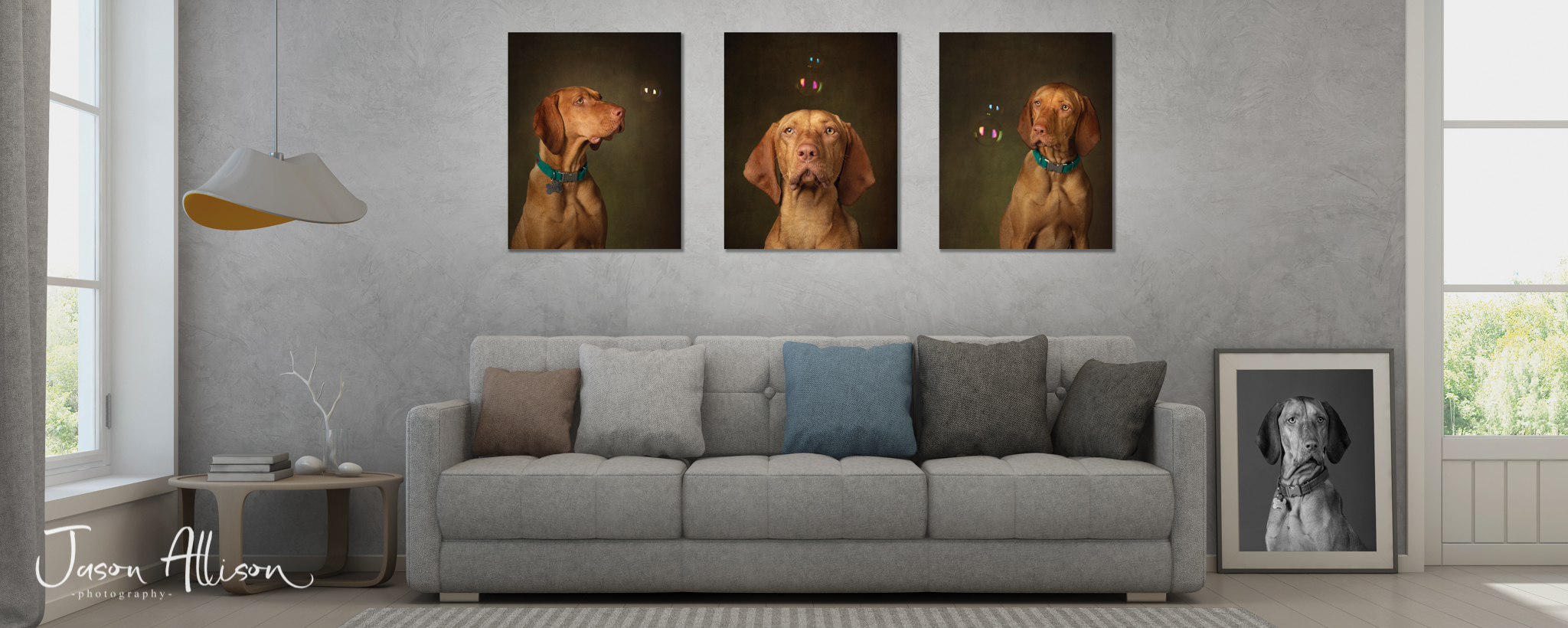 Bubble's Triple wall art by Jason Allison Dog Photography