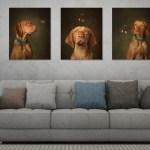 Bubble's Triple wall art by Jason Allison Dog Photography