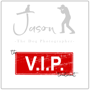 VIP Photography Sessions