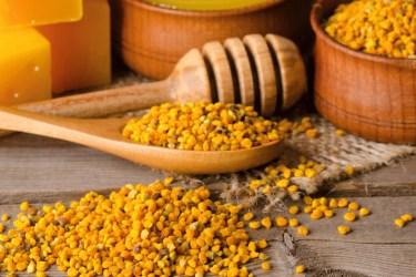 TSDS108303-bee-pollen