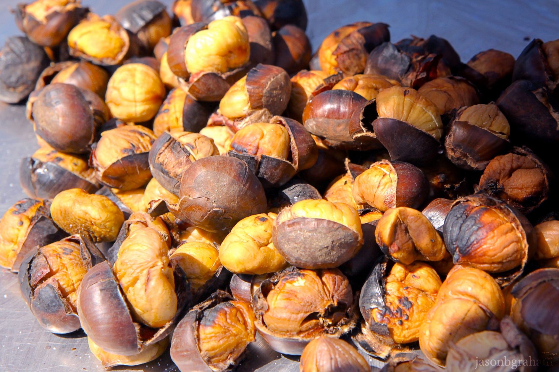 chestnuts-9204