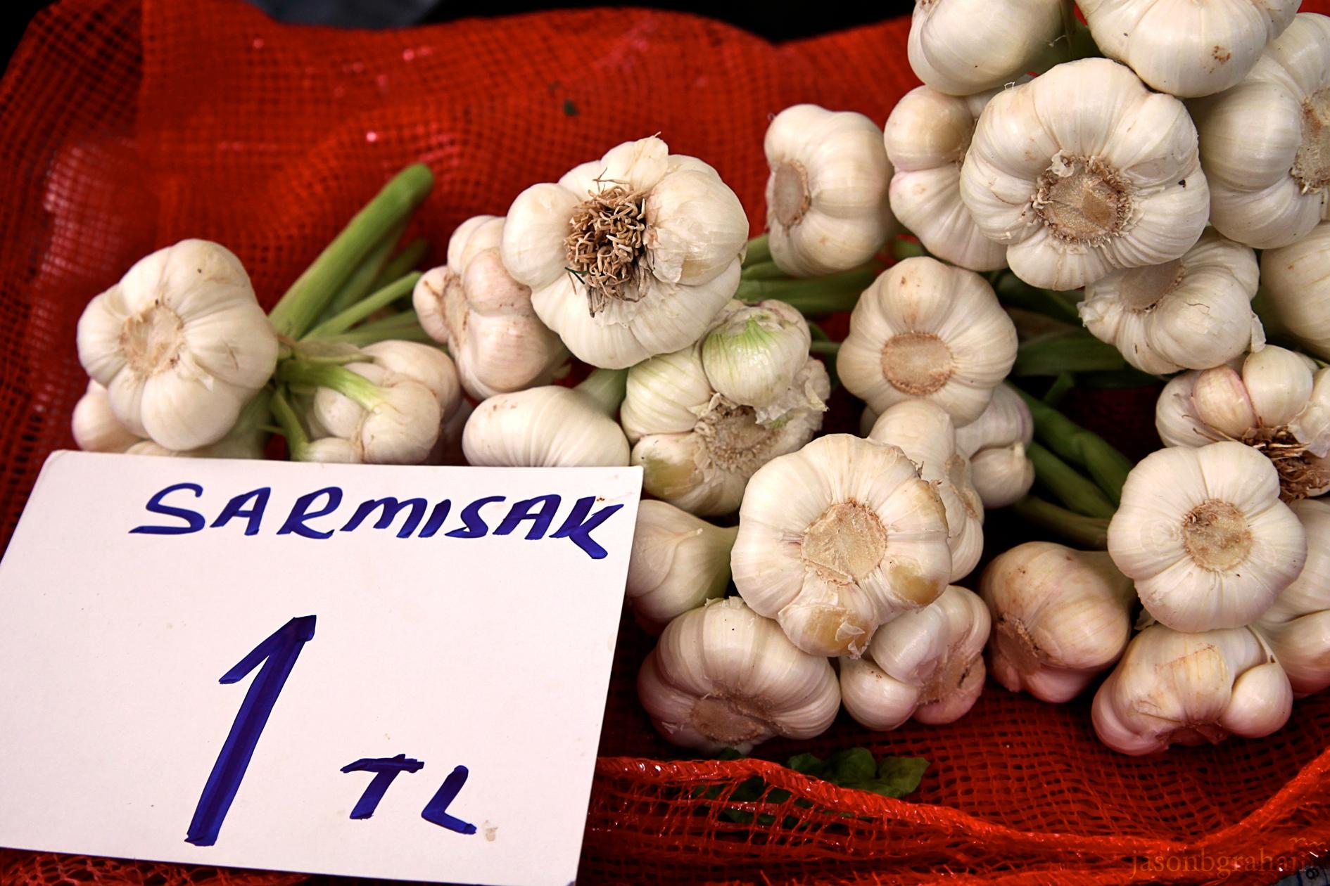 garlic-9595
