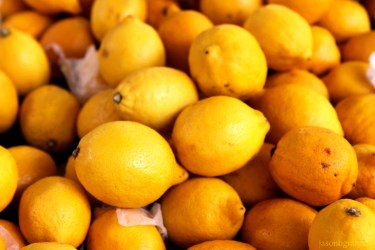 lemons-9666