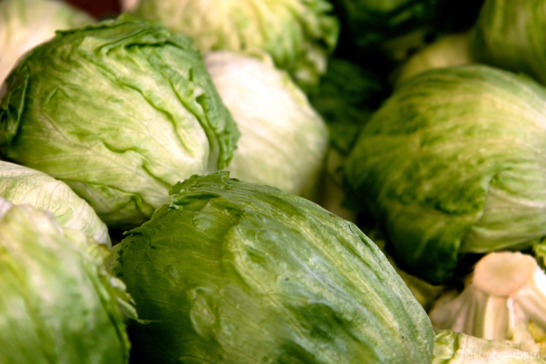 lettuce-9672