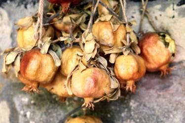 pomegranate-4947