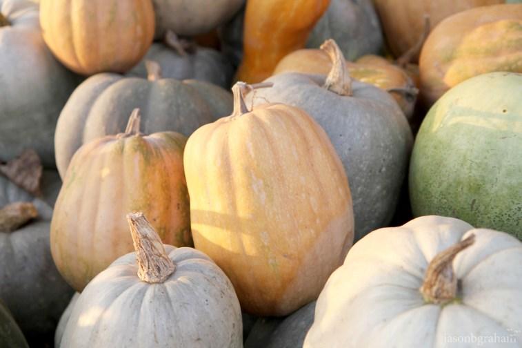 pumpkin-1999