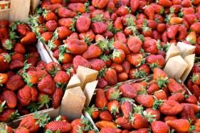 strawberries-9024