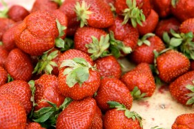 strawberries-9572