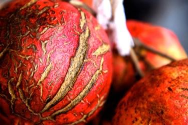 jason-b-graham-pomegranate-nar-0001