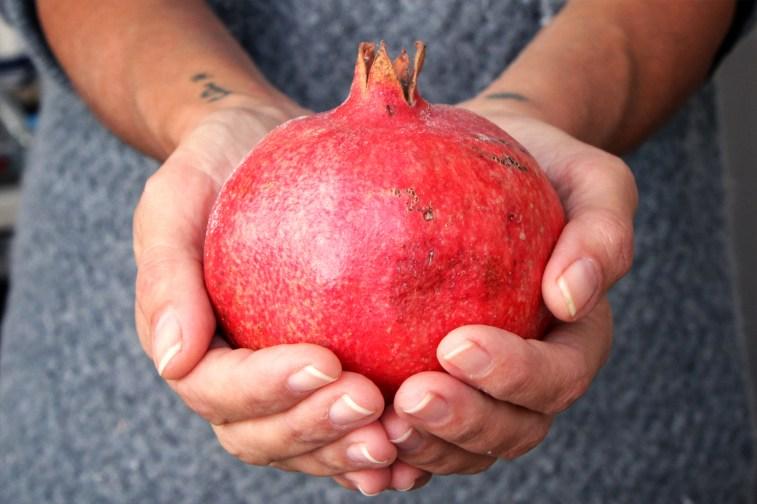 jason-b-graham-pomegranate-nar-0008