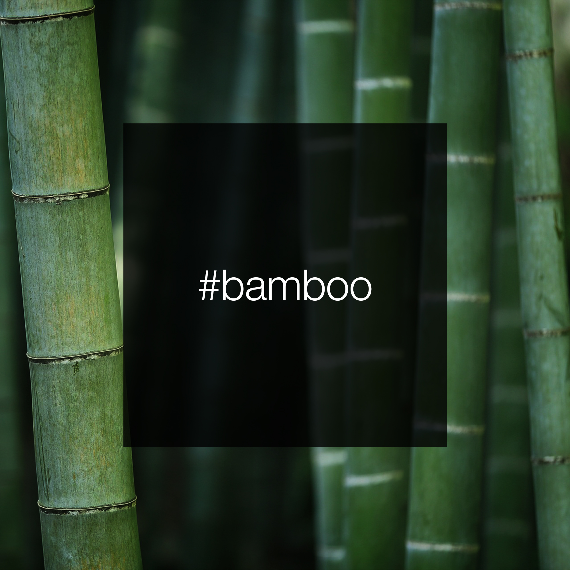 227464533-bamboo-pestemal-square-0001