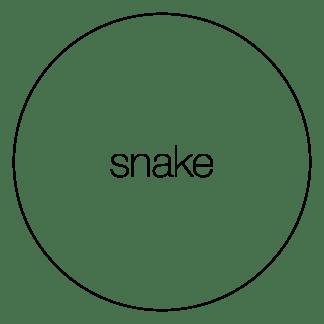 attribute-motif-snake