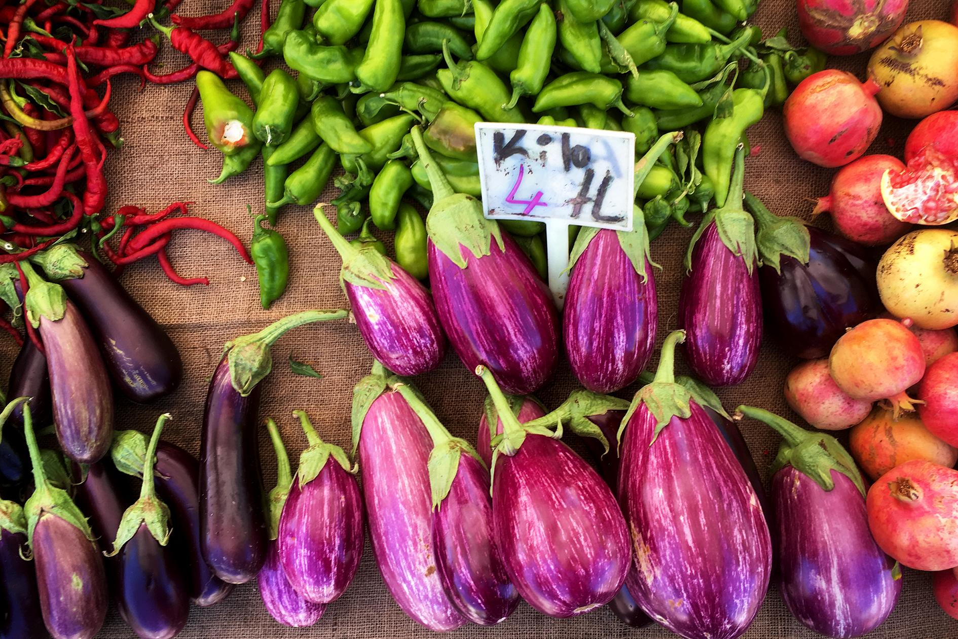 eggplant-2341