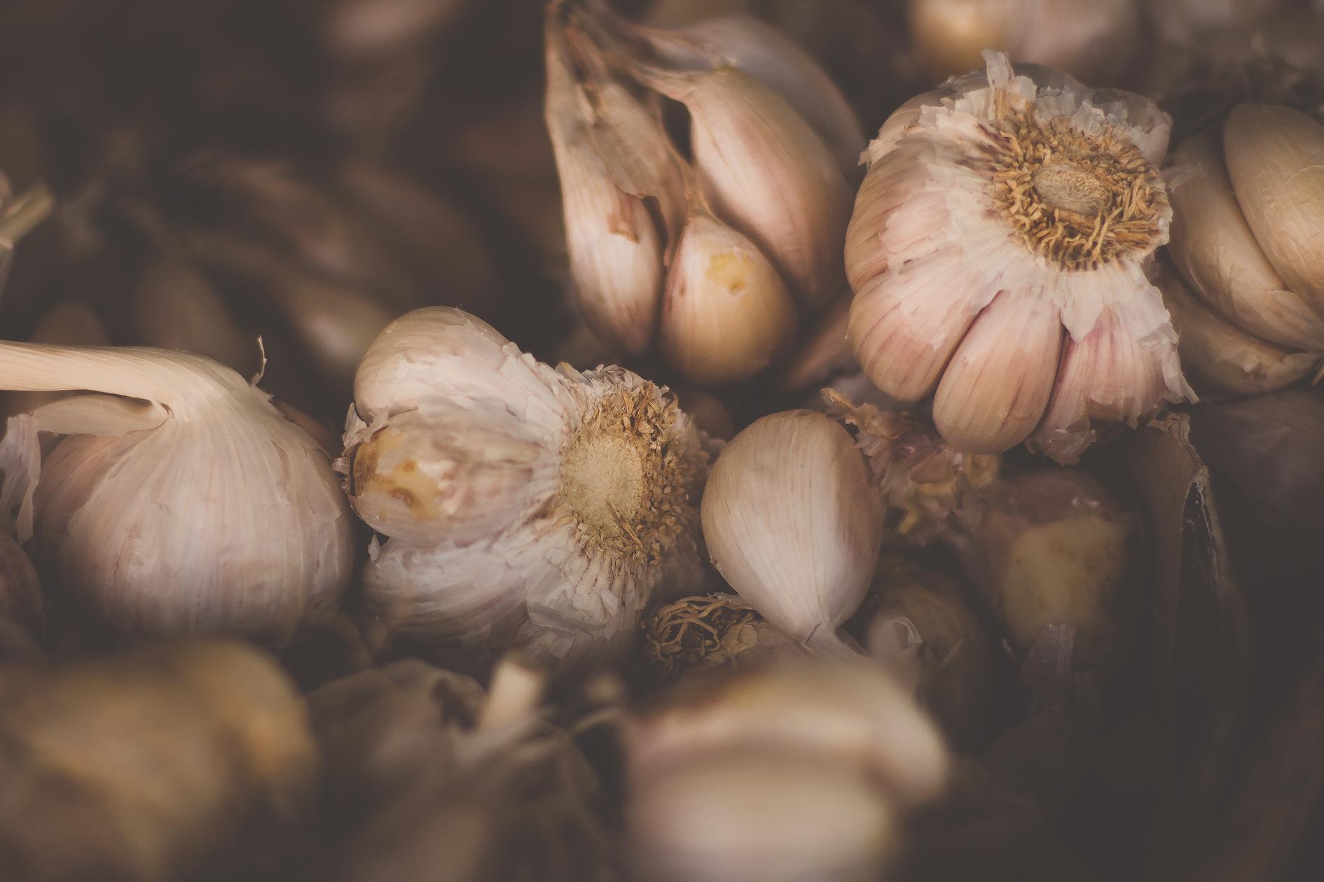 jason-b-graham-garlic-sarimsak-0002
