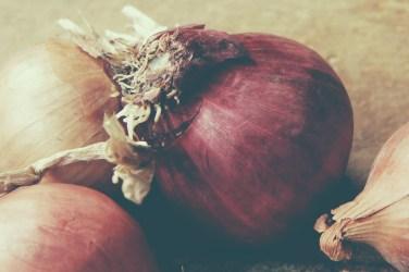 jason-b-graham-onions-sogan-0002