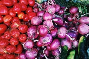 jason-b-graham-onions-sogan-0007