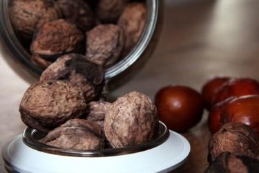 walnuts-ceviz-1946