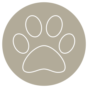aya-kapadokya-room-features-amenities-icon-pet-friendly