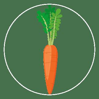 carrot-icon