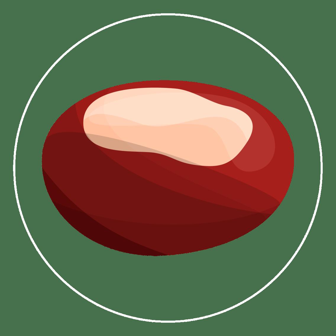 chestnut-icon