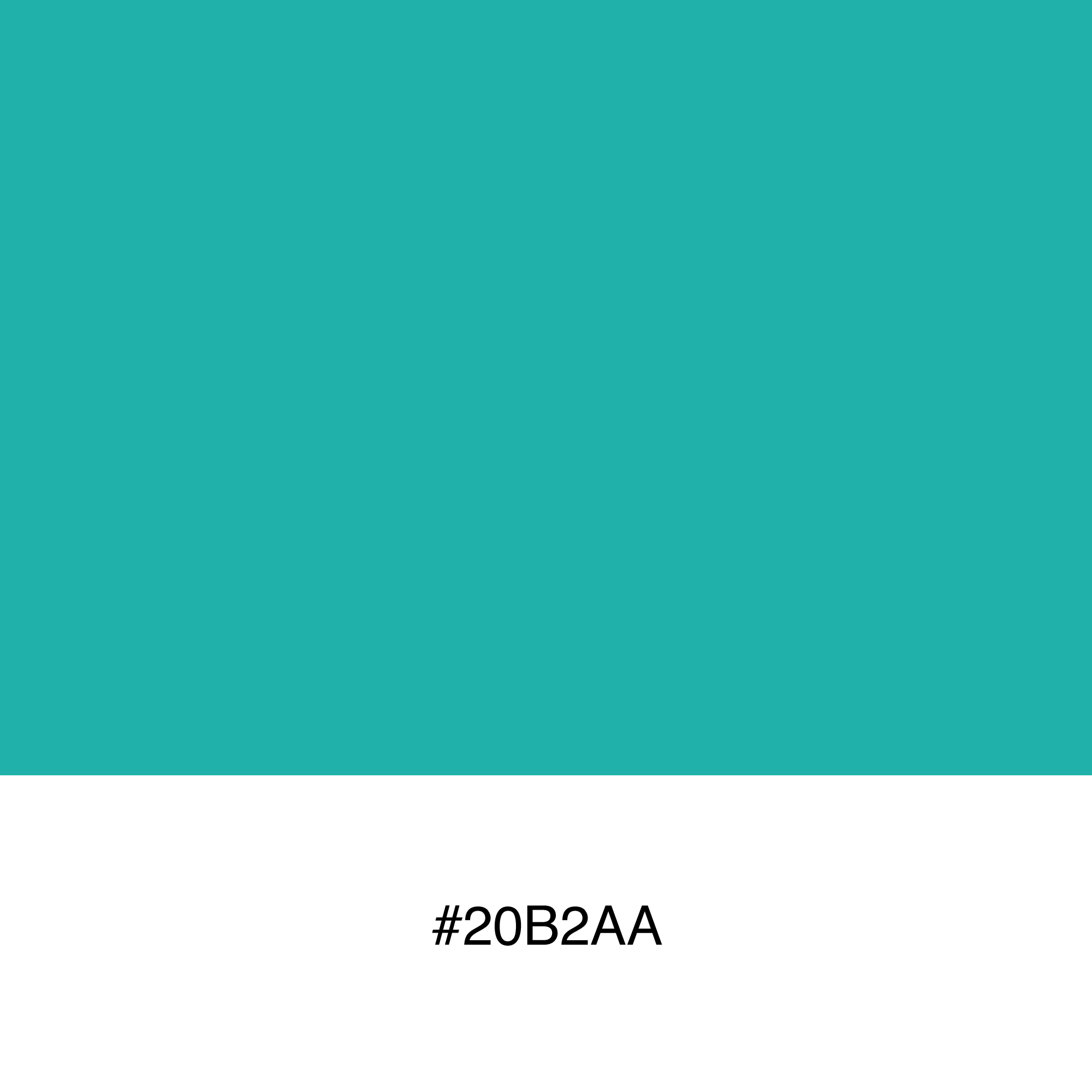 color-swatch-20b2aa